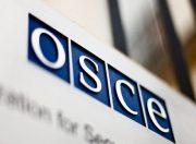 OSZE: Eine Organisation für Sicherheit oder ein Geheimdienst?