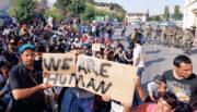 """Interview: Rebecca Sommer auf Lesbos: """"Da werden noch mehr NGO-Köpfe rollen"""""""